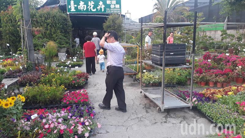 七甲花卉區業者推出多肉植物小花盆栽吸引民眾購買。記者周宗禎/攝影