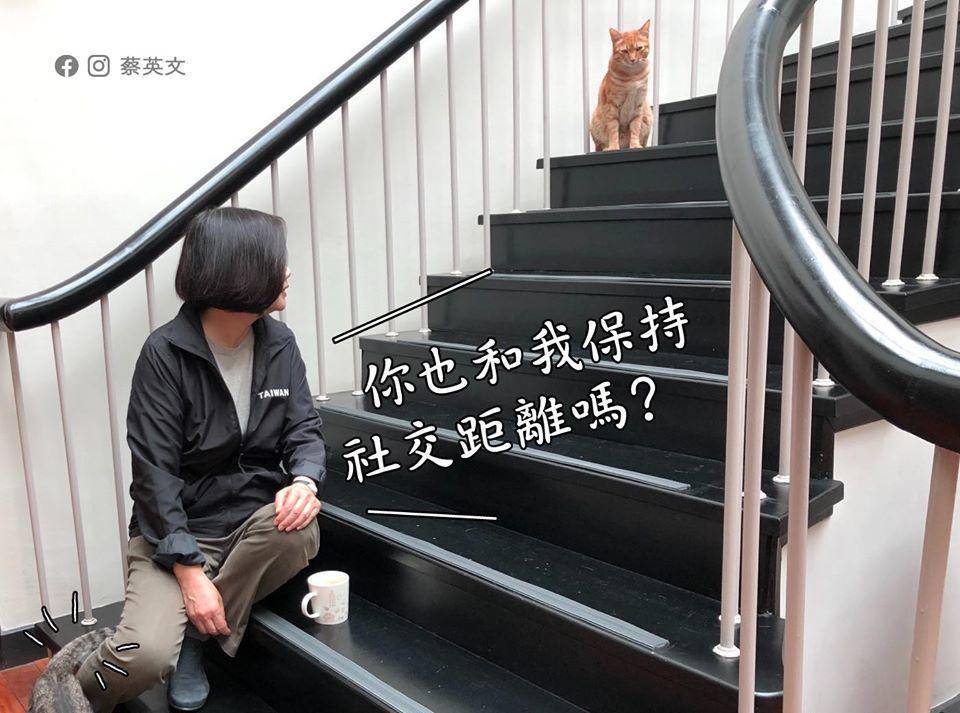 總統貼出與愛貓「蔡阿才」的趣味照片,提醒民眾與不特定人需要保持社交距離,家中特定...