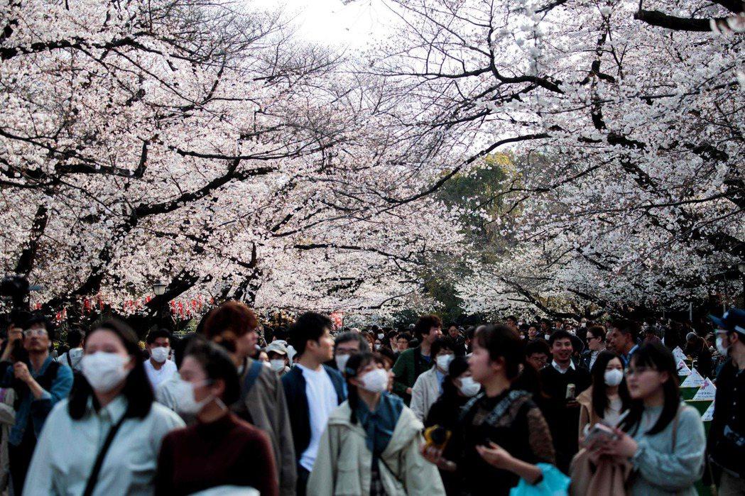 儘管日本新冠肺炎疫情嚴峻,東京民眾上月22日仍戴著口罩湧入上野恩賜公園賞櫻。(法...