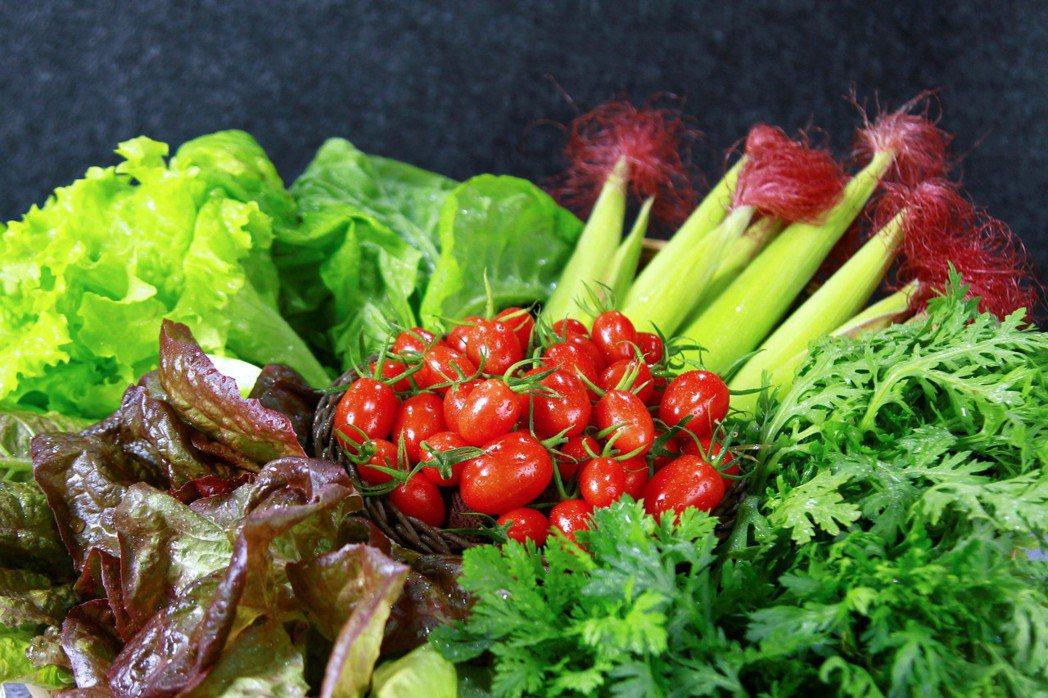 棗稻田有機蔬菜,品項多變,可以自由搭配最喜歡的組合。 棗稻田食玩農創空間/提供