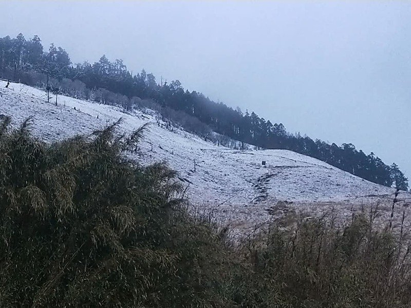 雪山三六九山莊下雪,前後都可見薄雪美景。圖/摘自臉書 「雪霸國家公園登山資訊分享站」