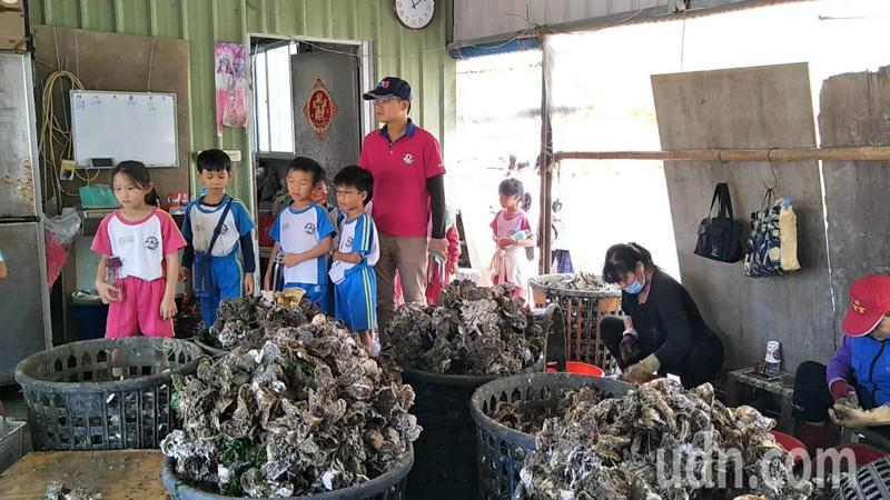 台南市安平區漁光里長林寧峰帶學童進行海洋教育。記者鄭惠仁/攝影