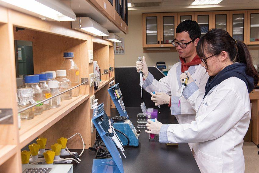 長庚大學擁有多元研究領域,提供最完善的學習資源。圖為臨床醫學研究所實驗室。 長庚...