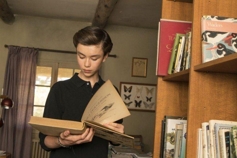 托馬研究父親關於雁的書籍@Yahoo!電影