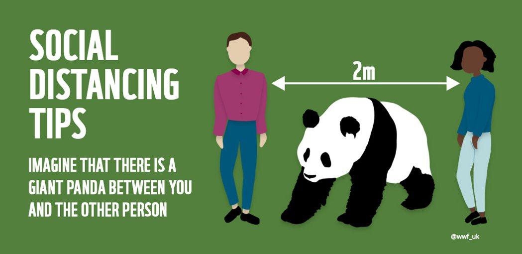 世界自然基金會(WWF )日本分會告訴大家至少要維持「一隻熊貓」的社交距離。圖/...