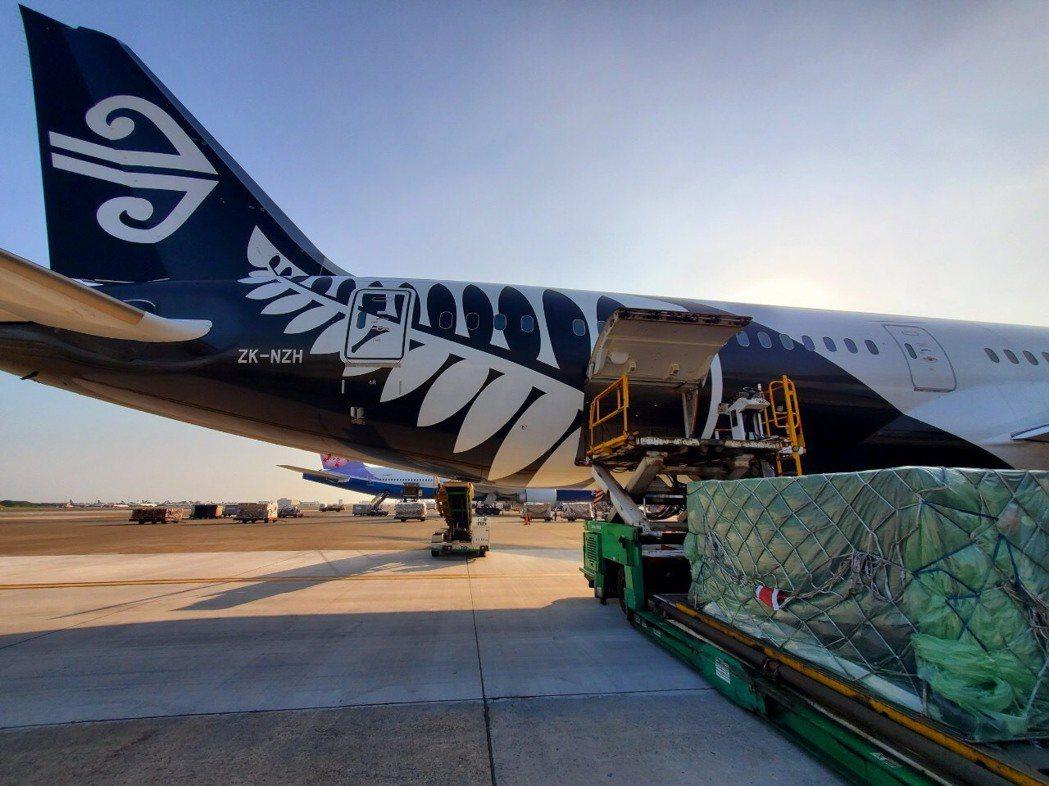 紐西蘭航空客機加入貨運市場。圖/紐西蘭航空提供