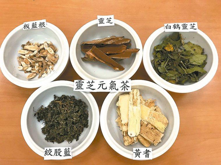 靈芝元氣茶主要藥材有黃耆、靈芝、絞股藍、板藍根等。 圖/彰化秀傳紀念醫院提供