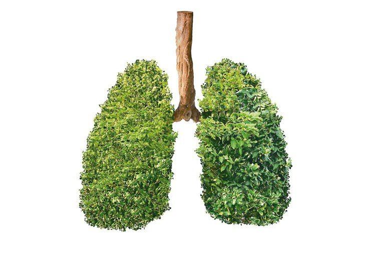 新冠肺炎疫情緊張,家電賣場的空氣清淨機等產品熱銷,以便宅在家也能淨化空氣品質自保...