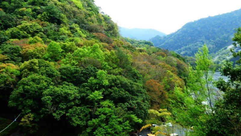 奧萬大位在仁愛鄉山區,豐富的山林和原住民文化,是探索自然和人文歷史的好去處。 圖...
