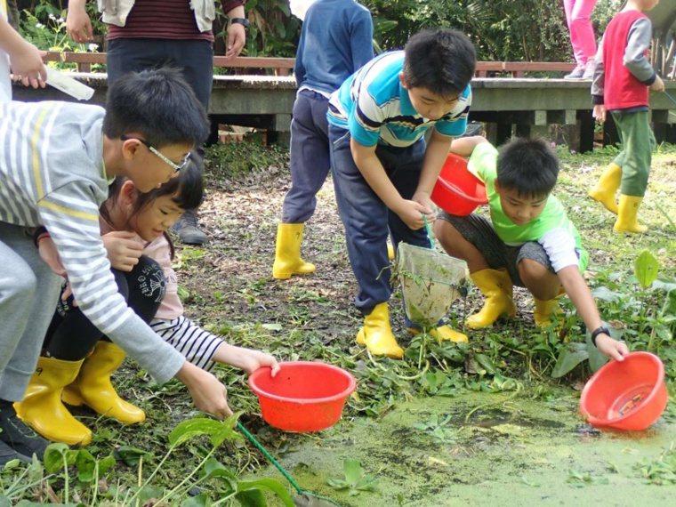奧萬大自然生態豐富,可讓孩子在山林中探索生態環境。 圖/南投林管處提供
