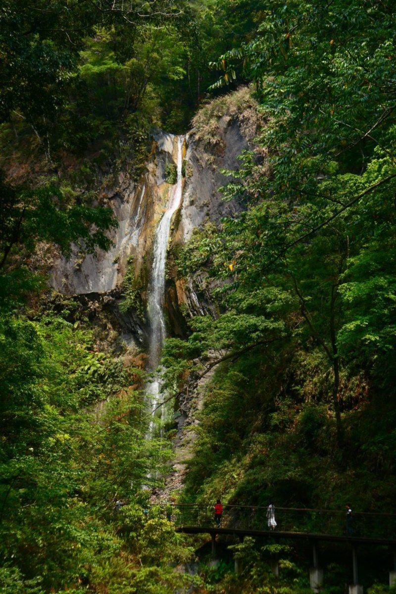 奧萬大充滿自然意趣,從斷崖上傾瀉而下的瀑布,猶如一條懸空白練。 圖/南投林管處提...