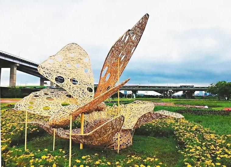 新北市高灘地管理處在板橋蝴蝶公園打造3公尺高蝴蝶立體竹編,成為拍照打卡最佳地點。...