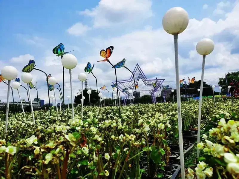 以蝴蝶造型燈飾點綴花草,增添浪漫氛圍。 圖/新北市水利局提供