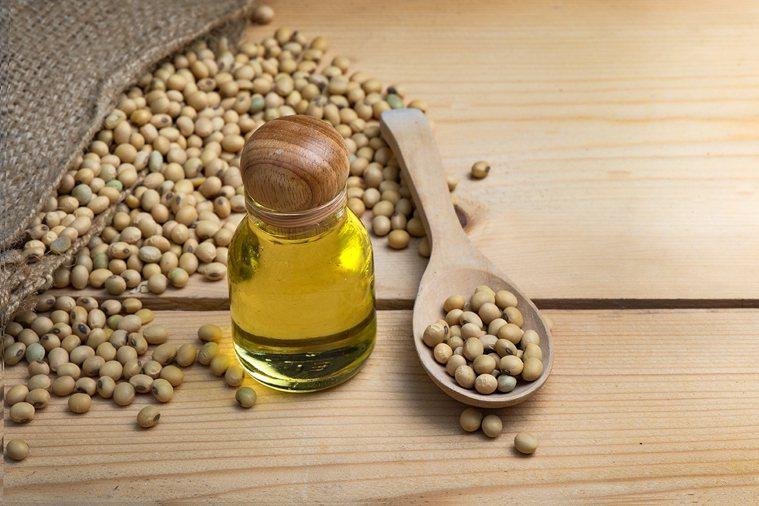傳統和高油酸黃豆油影響動物大腦內分泌中樞? 圖片/ingimage