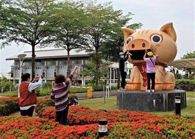 屏東大鵬灣國家風景區管理處遊客中心旁的2019台灣燈會副燈「豐豬爺」,有民眾為「豐豬爺」戴上自製的大型口罩阻煞,鵬管處人員要求戴上後拍攝即取下。記者潘欣中/翻攝