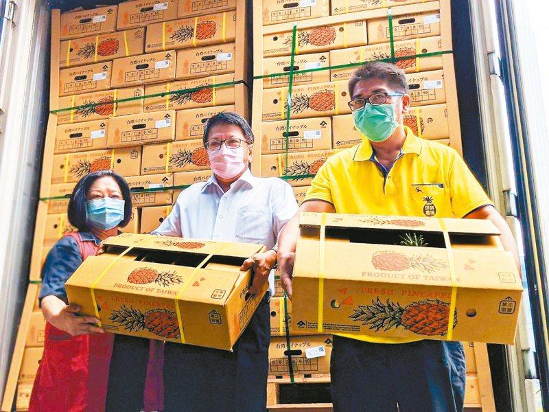 屏東縣政府表示,此波金鑽鳳梨出口能趕上日本鳳梨銷售的黃金周,未來出口量可望成長。 記者陳弘逸/攝影
