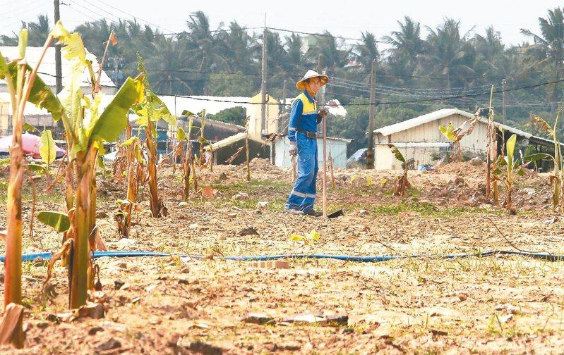 高雄、屏東是重要農業縣市,從農人口多。 記者劉學聖/攝影