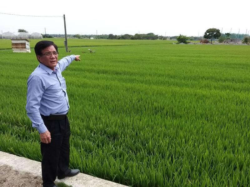 曾獲神農獎的太保市長黃榮利說「目前水稻急需用肥,卻買不到肥料,日後影響稻穀產量,誰負責?」記者魯永明/攝影