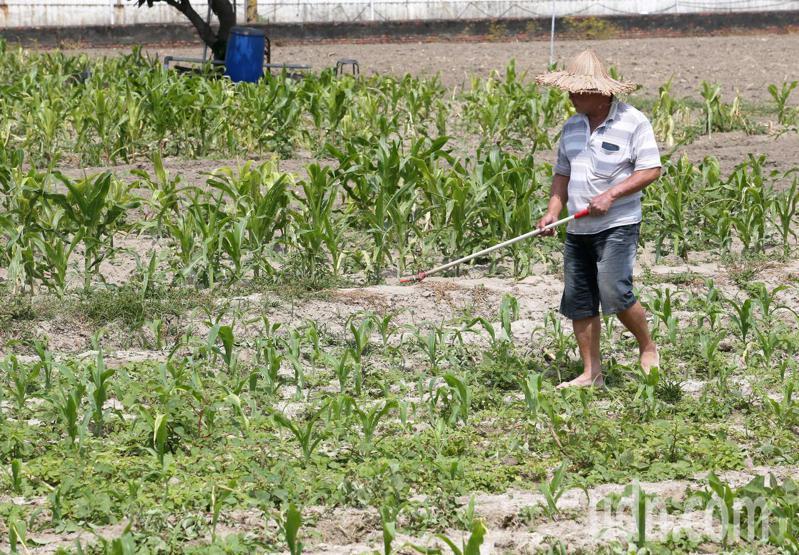 地方農會表示,現行農民儲金條例,對老農來說似個假議題。記者劉學聖/攝影