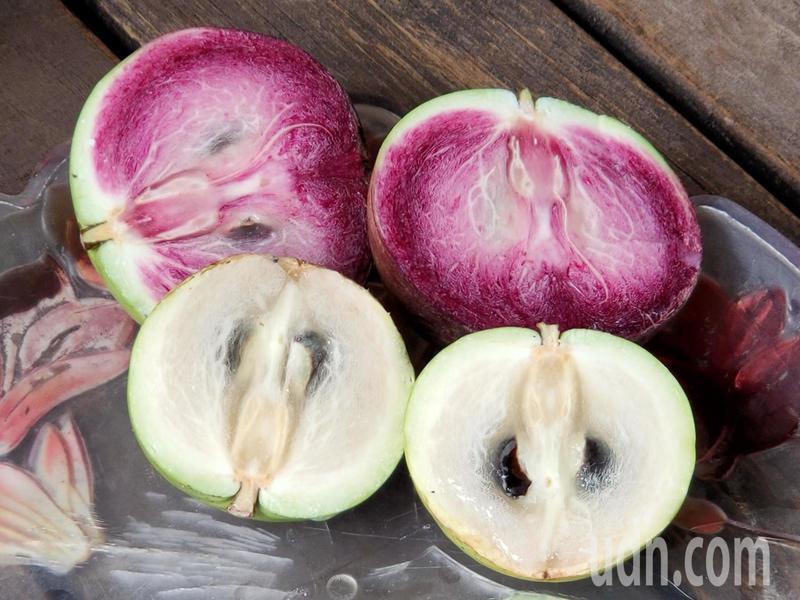 「金星果」原產於熱帶地區,因其果肉呈現乳白色略帶透明,還會溢出乳白色汁液,在台灣被廣泛稱為「牛奶果」。記者賴香珊/攝影