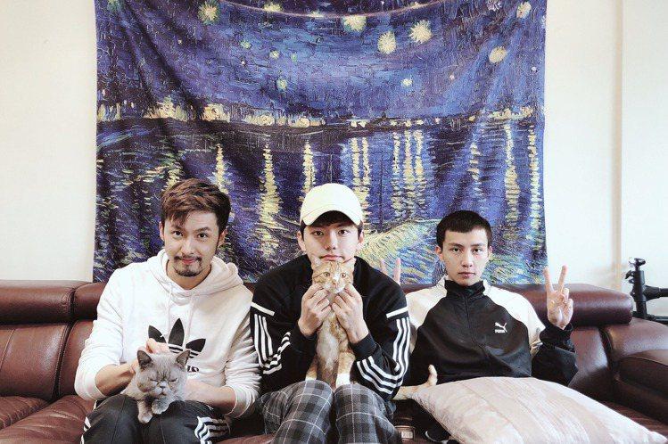 男星張雁名和小14歲的同門師弟、偶像樂團「noovy」鼓手Mark、貝斯手Jacob,加上兩隻貓,3男+2貓今年3月初展開同居生活,雖然年齡有差距,但因恰巧都是愛貓一族,生活機能、空間需求等原因都相...