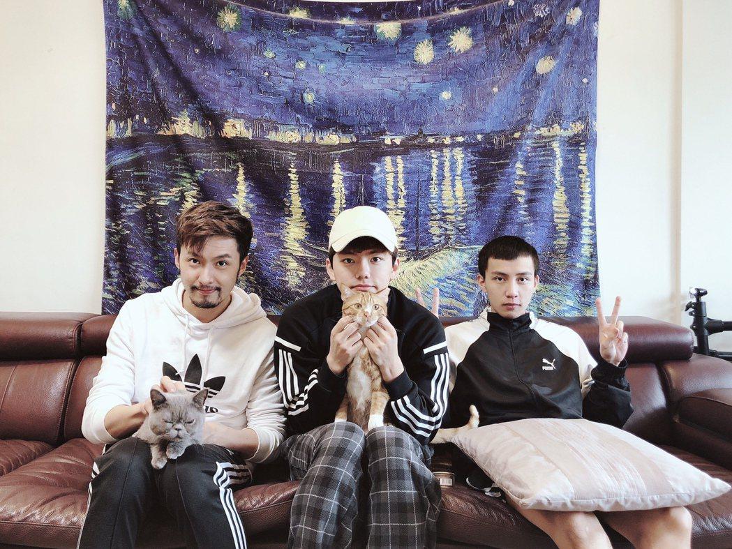 張雁名(左起)、Mark、Jacob展開3男+2貓同居生活。圖/伊林娛樂提供