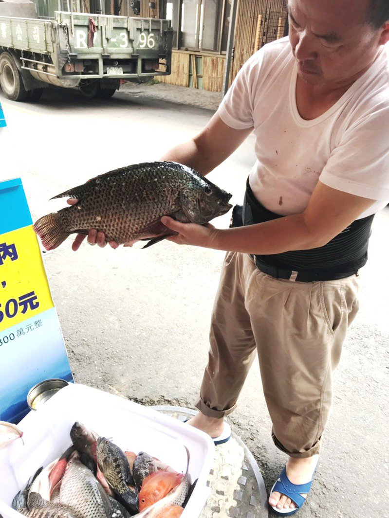 日月潭遊艇船長陳春溪靠打漁維生,一天靠漁獲十多斤賺微薄的收入養全家。圖/陳春溪提供
