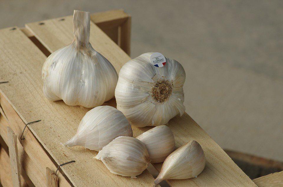 增加身體製造免疫抗體,補充五榖雜糧,綠色青菜及新鮮五色蔬果,香菇類,豆類及堅果類...