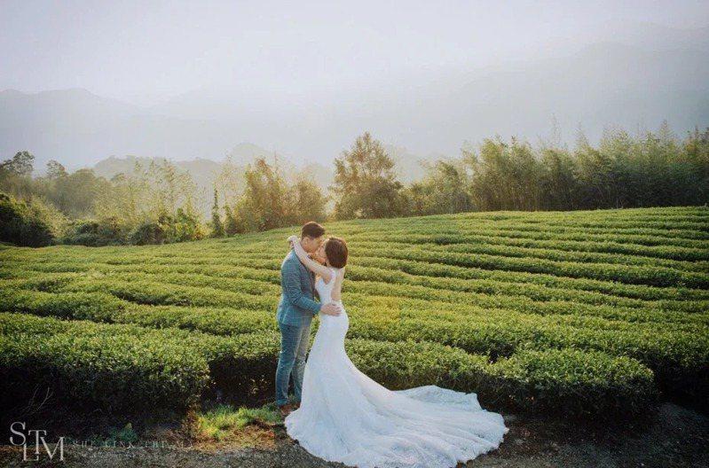 阿里山國家風景區推廣民眾到茶園風光等美景,留下美麗又浪漫的回憶。圖/阿里山管理處提供