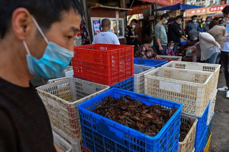 外媒報導武漢的傳統市場在「解封」後重新開張,引發西方側目。該地傳統市場因販售野味,被指控是新冠疫情的根源。法新社