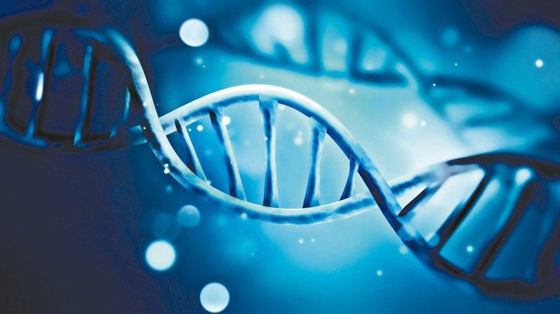 除了作為研判日後罹癌風險依據,BRCA1、BRCA2也是選擇卵巢癌用藥的重要參考依據。  圖/123RF