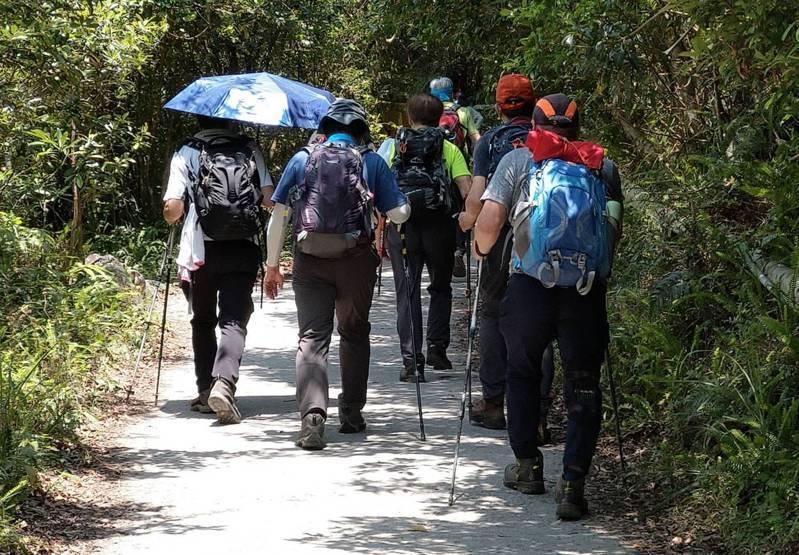 前往聖母山莊抹茶山的人潮絡繹不絕,一個接著一個,走也走不快,被網友笑稱是「聖母山莊進香團」。記者戴永華/攝影