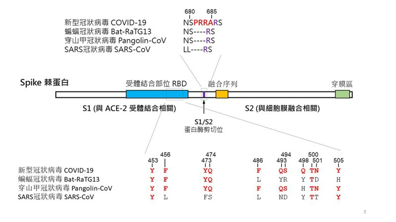 清大生科招生大熱門 入學考新冠病毒最新研究-109學測