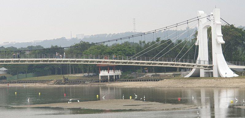 龍潭大池配合污水整治工程,排掉部分池水以利施工。記者鄭國樑/攝影