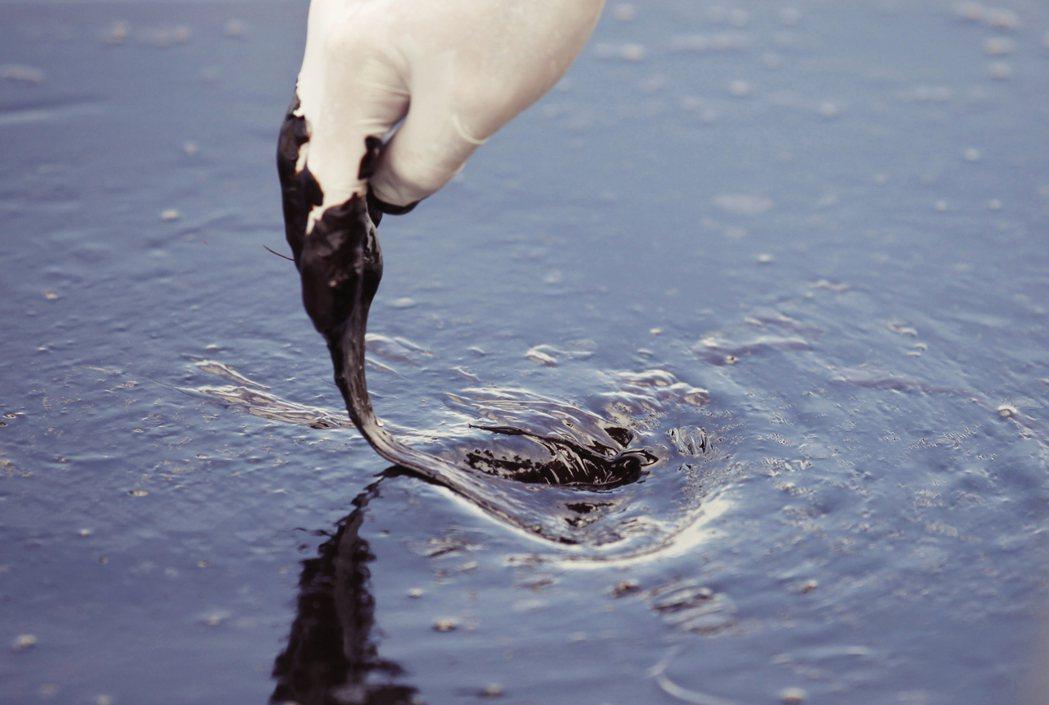 在全球疫情不見終點、國際油價戰爭衝擊未消的市場利空衝擊下,美國「西德州中級原油」...