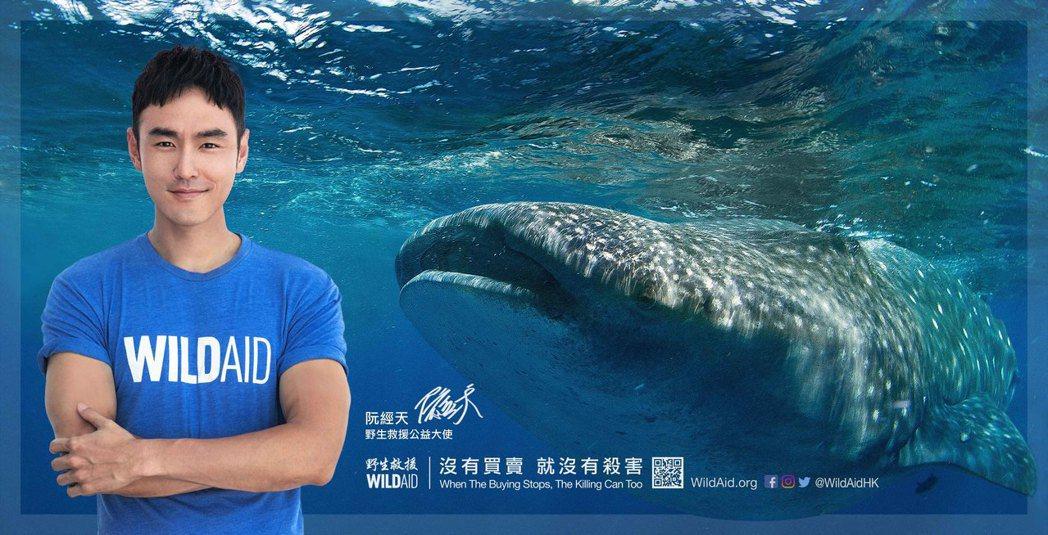 阮經天為「野生救援」拍攝「溫柔的巨人」紀錄片。圖/出頭總業提供
