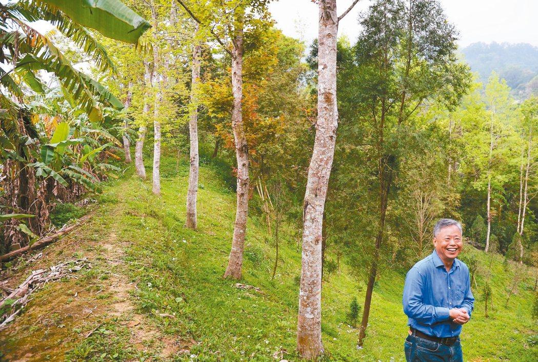 為了打造青少年生命教育園區,談雲生砸下畢生大半積蓄買地,在新竹山區默默種樹。 記...