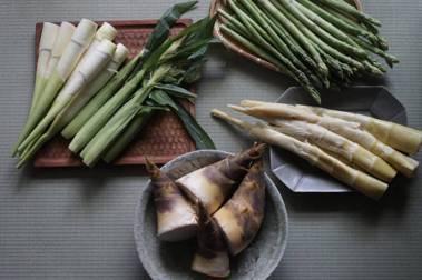 【怡安的四季食材色彩】穀雨:雨後筍色