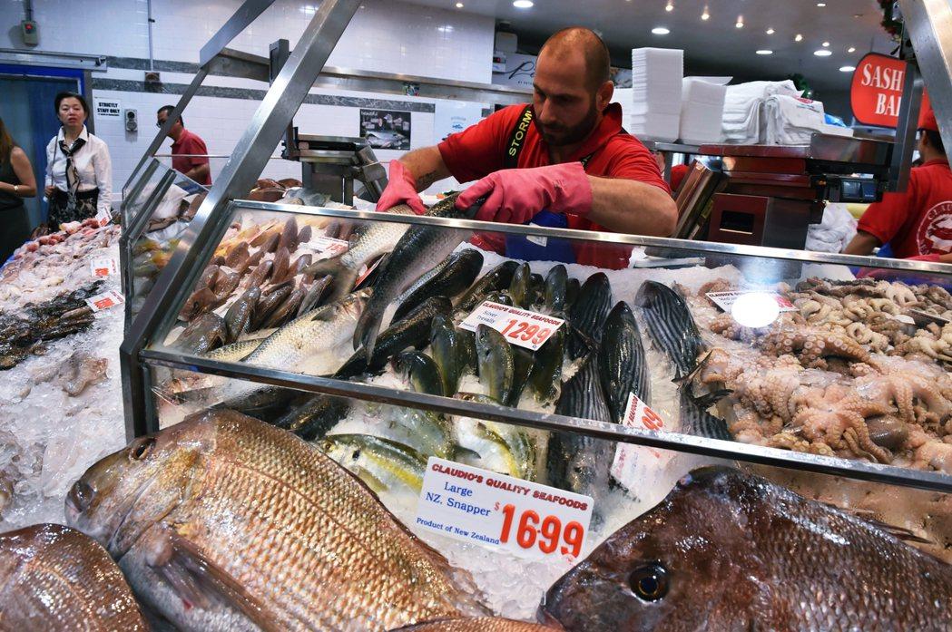 澳洲雪梨的魚市場。 圖/法新社