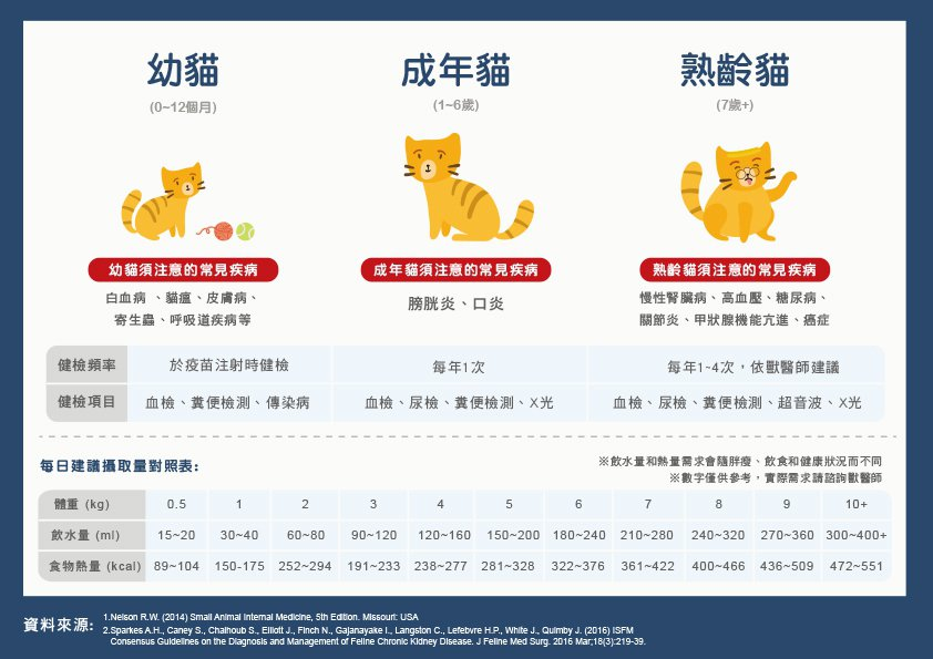 貓咪若出現五大警訊,便要注意是否罹患慢性腎臟病。圖/台灣貓科醫學會提供