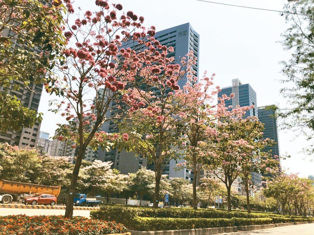 台中市政路。 記者游智文/攝影