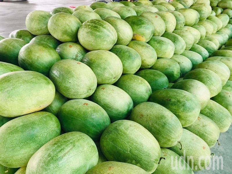 二崙西瓜大又甜,即日起開放民眾網購,數量有限。記者蔡維斌/攝影