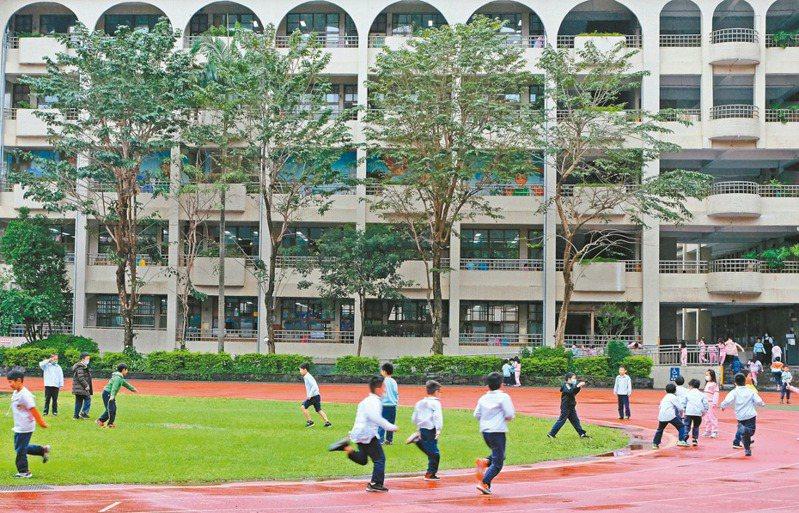 教育部正盤點全台近四千所校園空間與植栽需求,將為校園增種原生樹種。 記者郭琇真/攝影