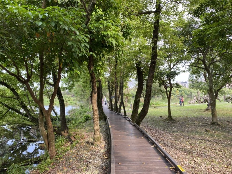 羅東林業文化園區沿著環池步道而行,花木扶疏,有如置身林間,相當愜意。 圖/羅建旺...