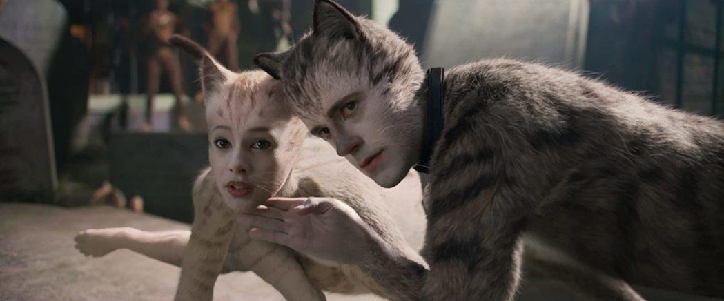 「CATS貓」口碑、賣座雙失利,成為公眾笑柄。圖/摘自imdb