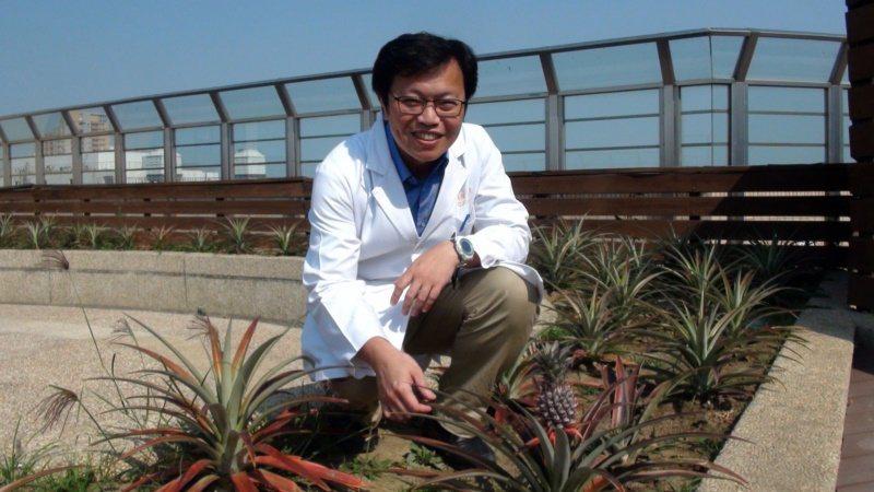 園藝治療可讓人身人紓緩。 圖/王昭月 攝影