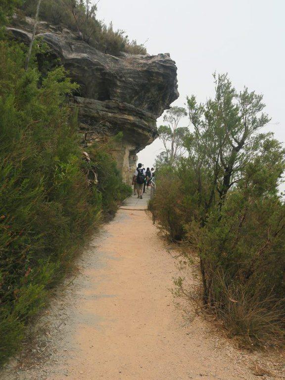 藍山 (Blue Mountains)的步道