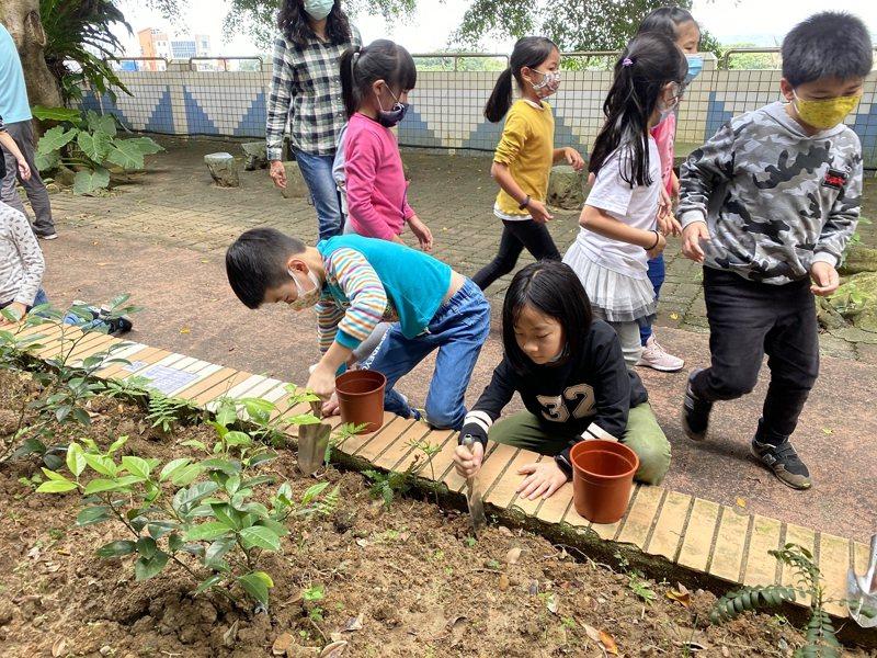金山區中角國小辦理戶外食農課程,老師帶著蚯蚓土要來種地瓜苗,透過實驗要來為孩子心中的疑問解答。 圖/紅樹林有線電視提供