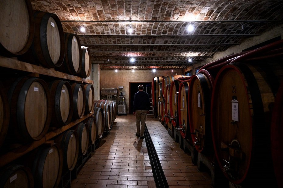 卡格雷羅釀酒廠(Cagliero's Winery)所有人卡格雷羅(Stefano Cagliero)23日走過酒窖內的酒桶。受到新冠肺炎衝擊,歐洲葡萄酒大滯銷,至少1千萬百升無法出口或販售。法國、西班牙和義大利已去函歐盟,允許庫存葡萄酒轉造工業用酒精,保住業者的一線生機。法新社