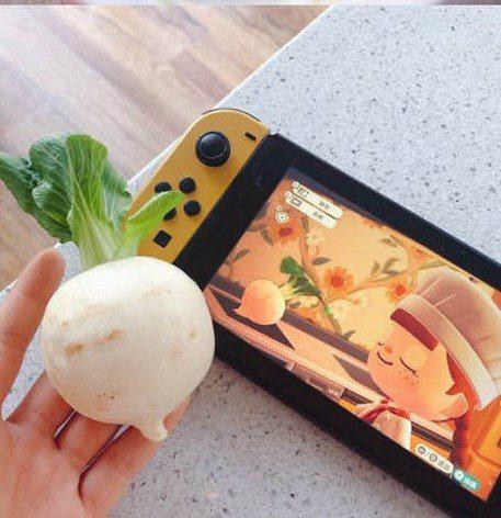 網友做的大頭菜與遊戲內的作對比,還原度非常高。圖擷自Twitter @EverydayBewear